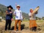 lowongan kerja petani