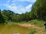 hutan kabuyutan